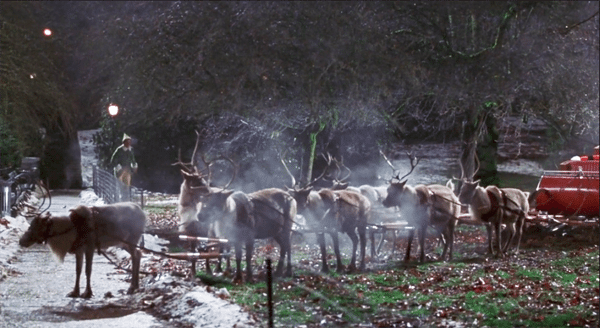 Image for Which one is a the odd reindeer out?